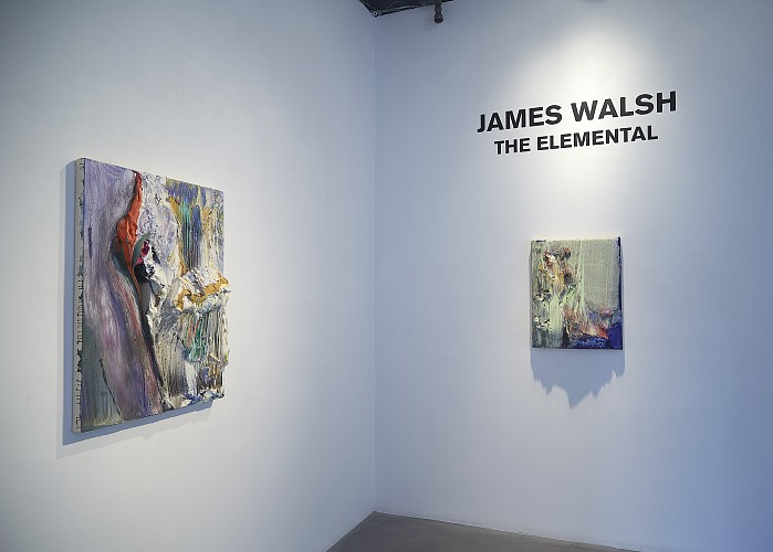 James Walsh: THE ELEMENTAL - Installation View